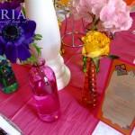 botez saria iasi flori de primavara (10)