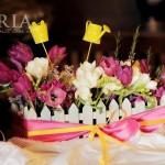 botez saria iasi flori de primavara (2)