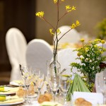 Nunta tematica munte padure (5)