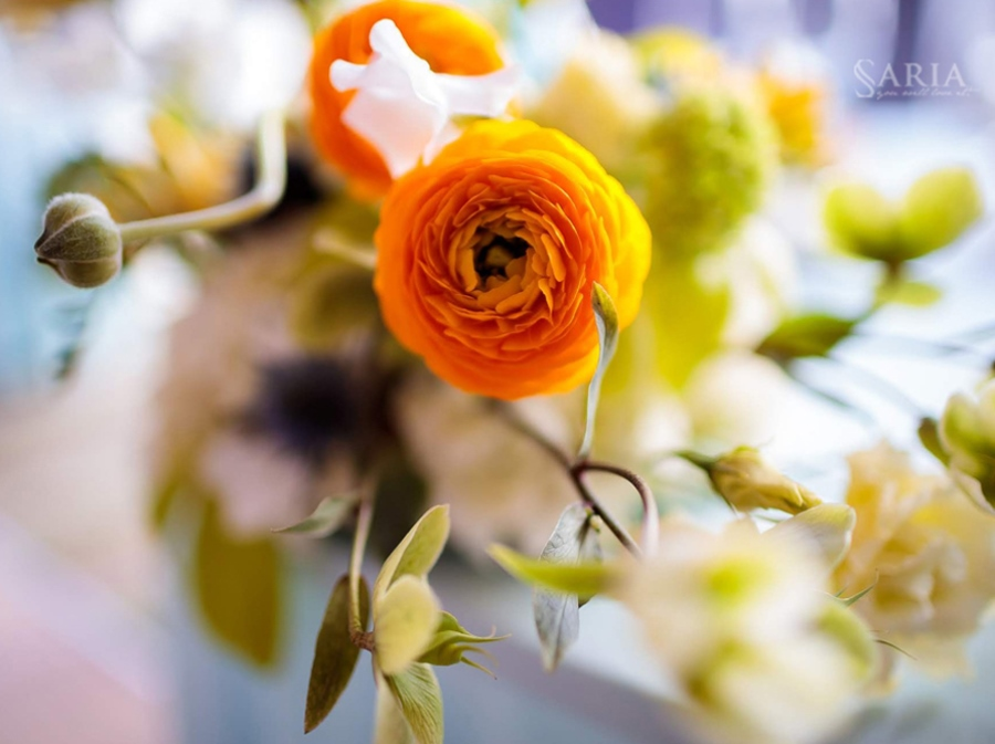 Aranjamente Florale Nunta Saria Decoratiuni Nunti Iasi